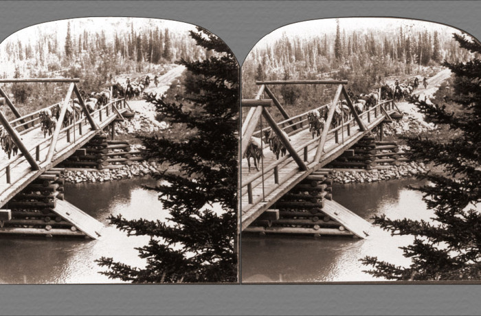 Pack Train Cross Bridge – Jasper Park