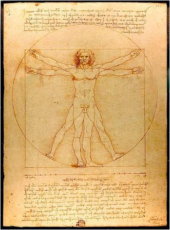 leonardo-da-vinci-studies-human-anatomy