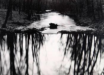 photography-and-wynn-bullock