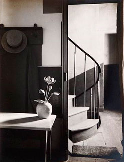 the-new-vision-andre-kertesz-2