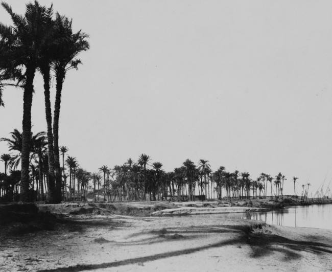 archived-photos-historical-portfolio-calotype-39