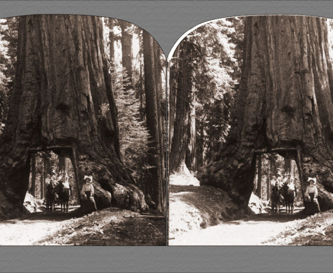 archived-photos-historical-portfolio-stereoviews-03